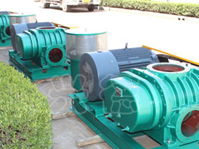 耐腐蚀罗茨增压泵